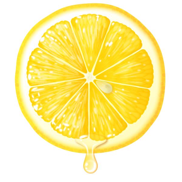 レモンの断面